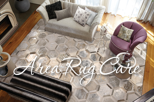 Area Rug Care Bismarck Nd House Of Color